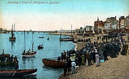 Hove ( Actually ) Guided Tour - Sarsens and Smugglers