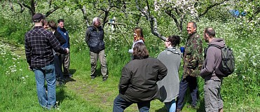 Apple Blossom Tour