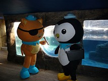Become An Octonaut Octo-Glow Explorer This Summer At Sea Life Brighton