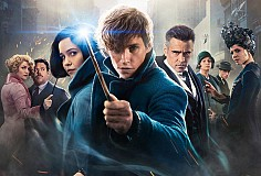 Family Film: Fantastic Beasts And Where To Find Them