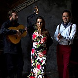 Flamenco With Alma Gitana