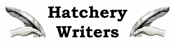 Hatchery Writers - Writing and Research – a talk by Dave Patchett