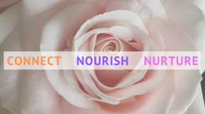 CONNECT -  NOURISH -  NURTURE - Day Retreat
