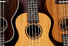 Sussex Ukulele Festival 2017