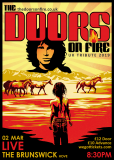 The Doors On Fire
