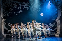 Matthew Bourne's Swan Lake no rating