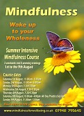 Summer Intensive Mindfulness Course