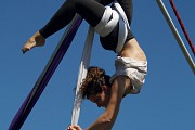 Adult aerial circus course